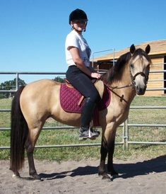 Cassie ridden at 5 years old